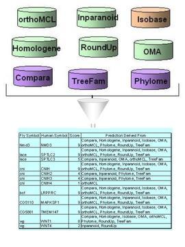DIOPT integration schema