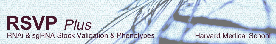 RNAi Stock Validation & Phenotypes